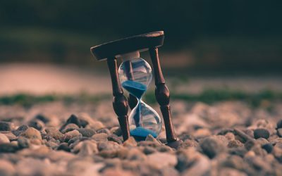 Taking an Organizational View of Time Management