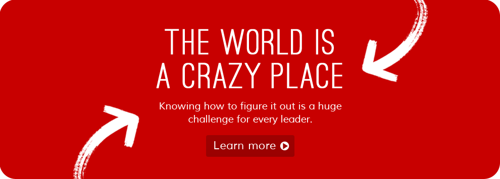 Doug Williamson - THE WORLD IS A CRAZY PLACE banner